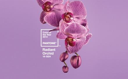 Color del año Radian Orquid Pantone